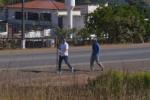 Comunidade Coração Fiel na maior Romaria mariana de Goiás